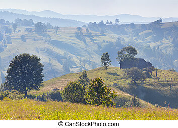 Beautiful summer landscape in the mountain village