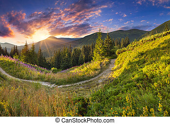 Beautiful summer landscape in the mountains with pink flowers.
