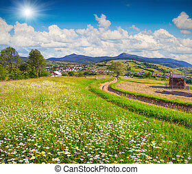 Beautiful summer landscape in the mountain village