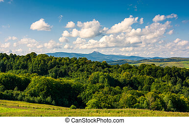mountain ridge with high peak behind the forest - beautiful...