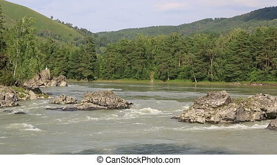 mountain river Katun - Beautiful summer landscape mountain...