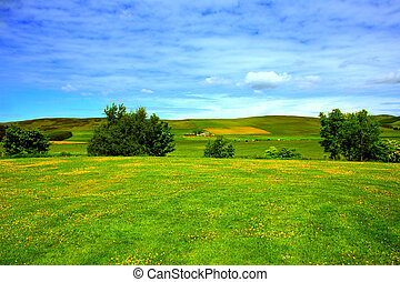 Beautiful summer landscape, Scotland