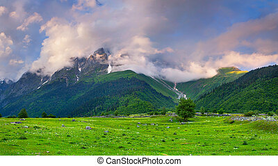 Beautiful summer landscape with a huge mountains in the fog