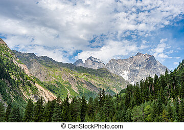 Beautiful summer landscape with morning in mountains