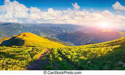 Beautiful summer landscape with road in the mountains