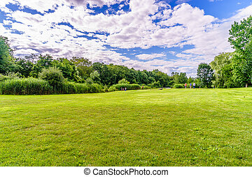 beautiful summer landscape with soft green grass