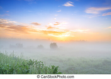 summer landscape with sunrise and fog
