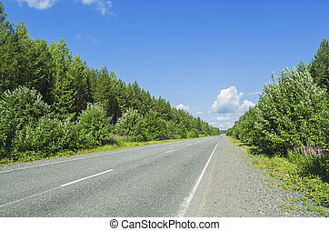 Beautiful summer landscape with the road