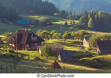 summer landscape with village in mountains