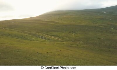 Beautiful summer meadow and field in mountain valley aerial view