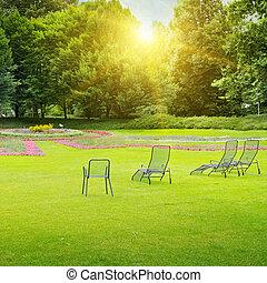 beautiful summer park