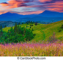 Beautiful summer sunrise in the mountain village