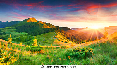 Beautiful summer sunrise in the mountains. - Digital artwork...