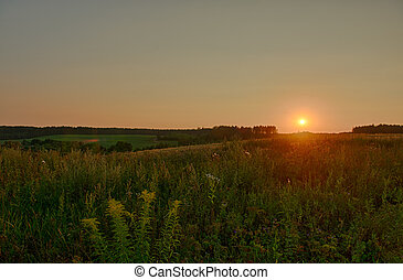 Beautiful Summer Sunset in Countryside
