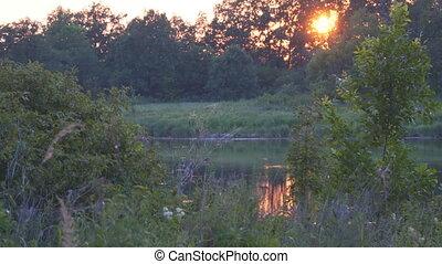 Beautiful summer sunset on small lake - Beautiful summer...