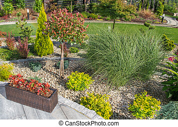 Beautiful Summer Time Backyard Garden