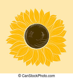 beautiful sunflower isolated on a white background. Hand-drawn contour lines and strokes.