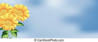 Beautiful Sunflower on Sky Background