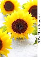 Beautiful sunflowers on fabric background