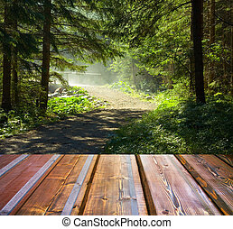 Beautiful sunlight in the autumn forest and wood planks floor