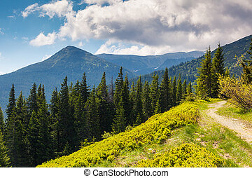 mountain landscape - Beautiful sunny day is in mountain...
