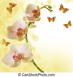 Beautiful sunny orchid and butterfly - floral background