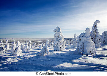 Beautiful sunny winter landscape in Lapland Finland