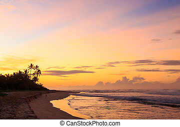 Beautiful sunrise at the beach in the tropics