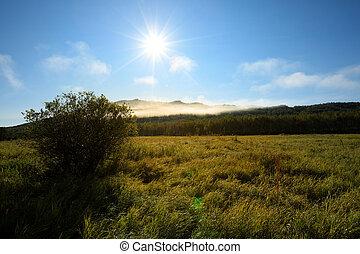 beautiful sunrise green grassland and mountains under blue sky