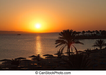 Beautiful sunrise in Egypt on the beach.