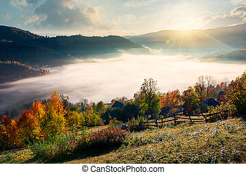 orchard near the village on hill side - beautiful sunrise in...