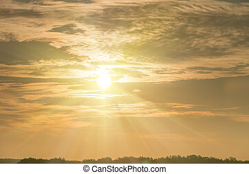 Beautiful sunrise in the summer