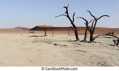 beautiful sunrise landscape of hidden Dead Vlei in Namib...