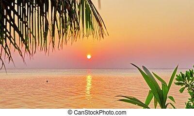 Beautiful sunrise on a tropical island in the Maldives.