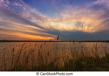 Beautiful sunrise on the lake, with reeds in the foreground