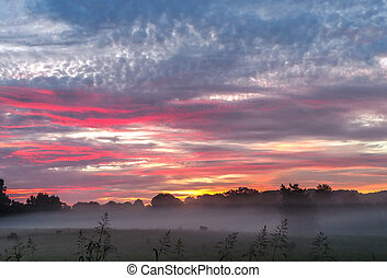 beautiful sunrise over farmland in south carolina