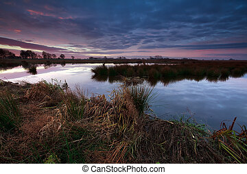 beautiful sunrise over swamp, Onlanden, Drenthe, Netherlands