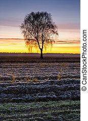 Beautiful sunrise over the field, countryside landscape