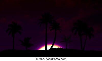 Beautiful sunrise with palm