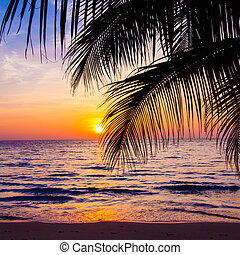 Beautiful sunset at a beach resort in tropics