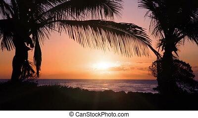 beautiful sunset at mauritian beach