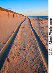 Beautiful sunset at the beach with sand dunes