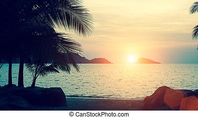 Beautiful sunset at tropical sea co