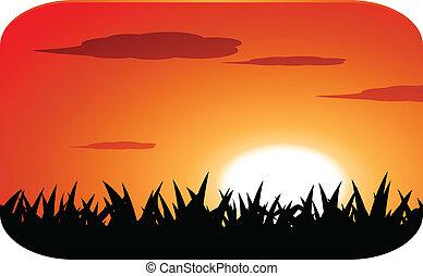 sunset -  beautiful sunset