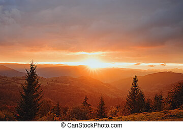 Beautiful sunset in mountains with pine trees on the foreground.