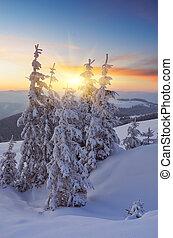 Beautiful sunset in winter
