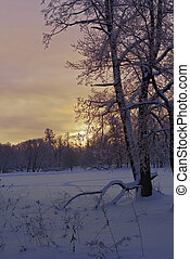 Beautiful sunset in winter park