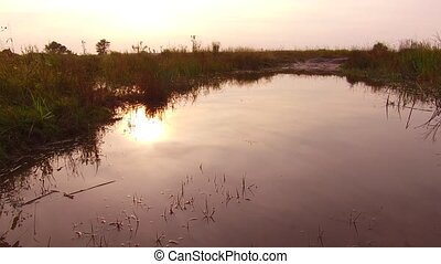 Beautiful sunset landscape nature. Small river with clear...
