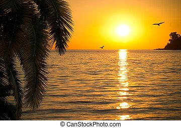 Beautiful sunset on seashore
