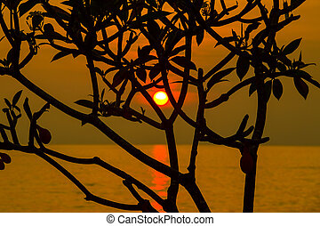 Beautiful sunset on the beach in Thailand.
